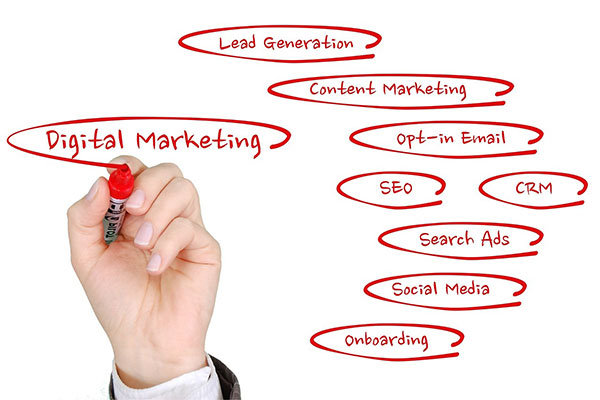 organigrama marketing online